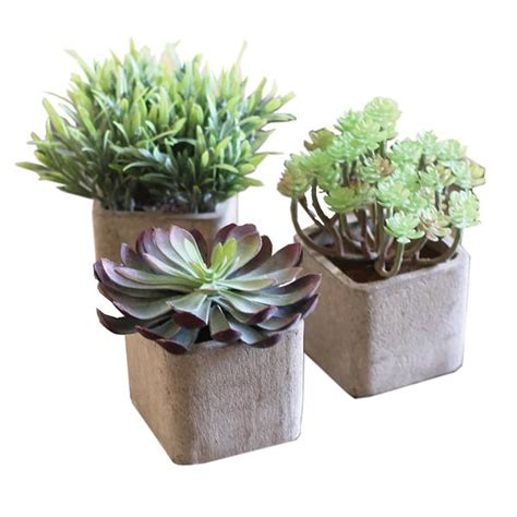 pots for succulents for sale set of 3 artificial succulents in pots woodwaves