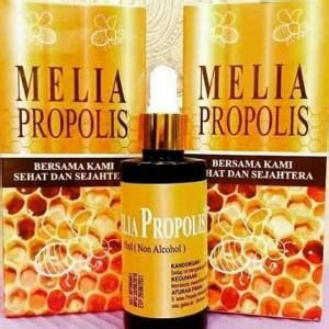 Propolis Melia Kemasan Baru melia propolis 30ml kemasan baru dari pt melia sehat
