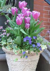 inspiring pots and planters outdoor container