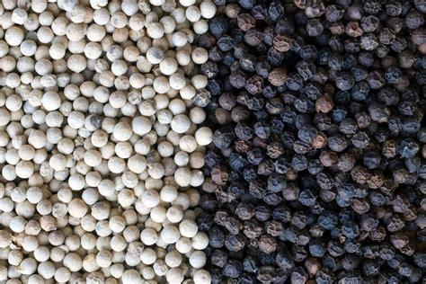 White Pepper by White Pepper Vs Black Pepper Spiceography Showdown