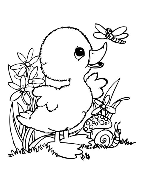 free printable coloring pages of ducks cute baby duck coloring pages google search kids