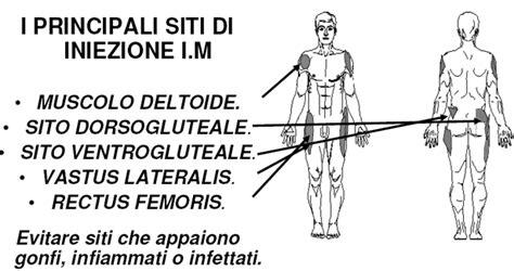 iniezioni nel sedere via di somministrazione intramuscolare