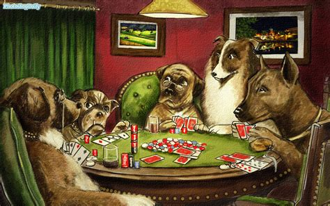dogs playing poker wallpapers wallpaper cave