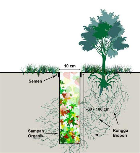 Pupuk Organik Kompos Dari Sah pelapukan organik