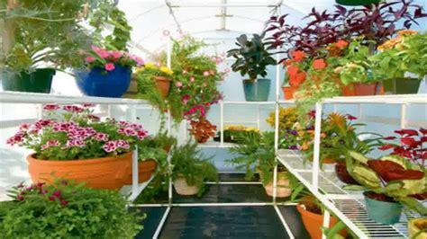 home flower gardening tips for beginners