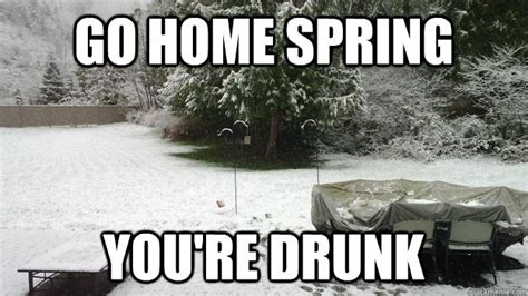 Go Home You Re Drunk Meme - go home spring you re drunk go home you are drunk