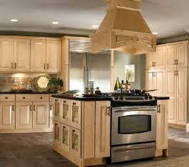 Built In Kitchen Designs Gallery For Gt Kitchen Designs With Island Cooktop