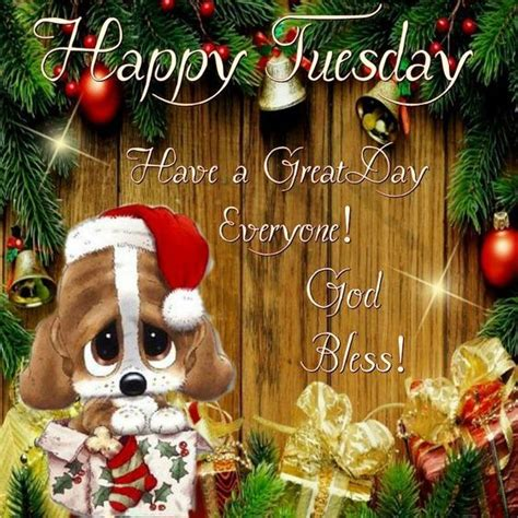 puppy christmas decor happy tuesday quote pictures   images  facebook tumblr