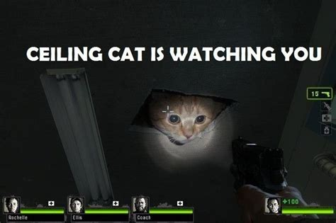 Cat Meowing At Ceiling by Ceiling Cat Meme Base