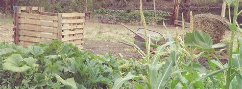 No Dig Vegetable Garden Green Platypus Gardens No Dig Vegetable Gardening