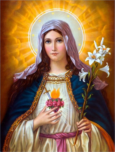 immaculate heart of mary saint andrew daily missal the immaculate heart of the