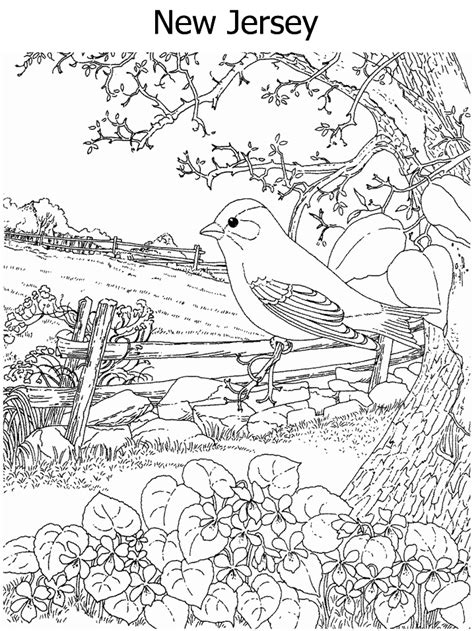 missouri fish coloring pages missouri state aquatic animal missouri fish coloring pages