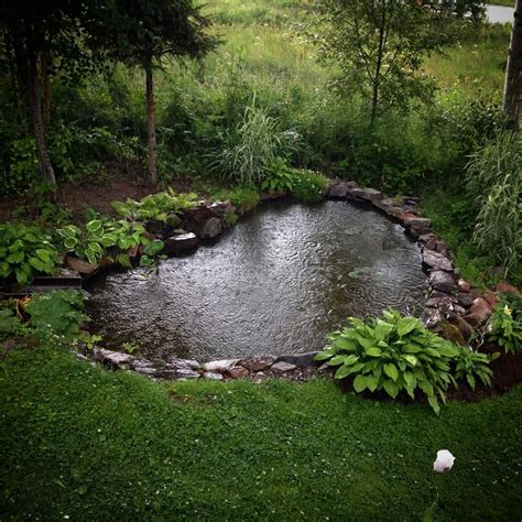 pond backyard garden pond hostas envy pinterest gardens