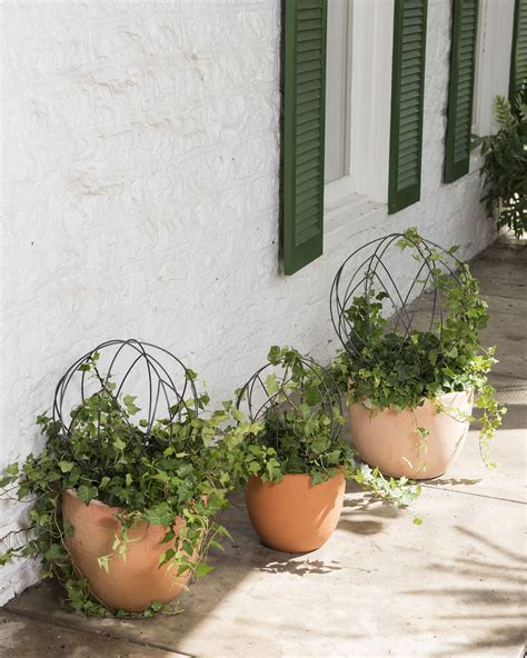 buy topiary frames topiary frames sphere topiary frame wire topiary
