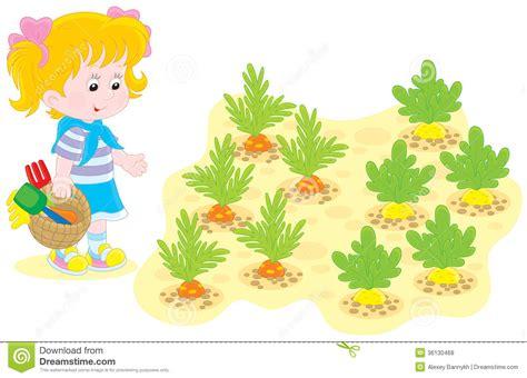 Girl in a vegetable garden stock vector. Image of growing
