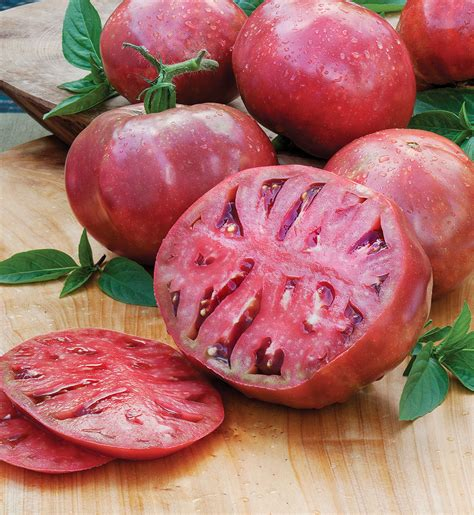Cherokee Purple Heirloom Tomato   Bonnie Plants