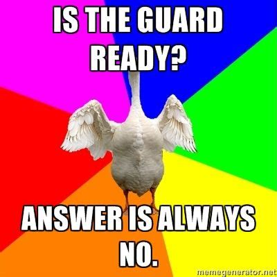 Color Guard Memes - 74 best band images on pinterest band jokes marching