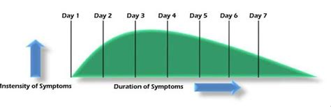 Average Detox Time For Opiates by Opiate Withdrawal Symptoms Timeline From Opiate Addiction