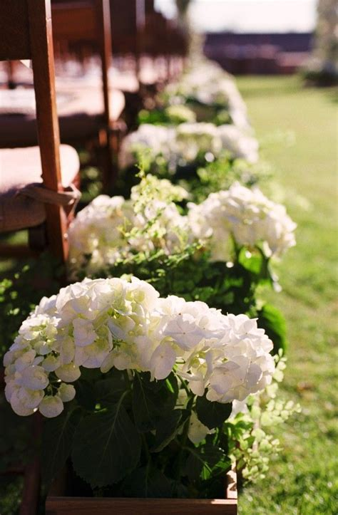 152 best images about Potted flower wedding on Pinterest