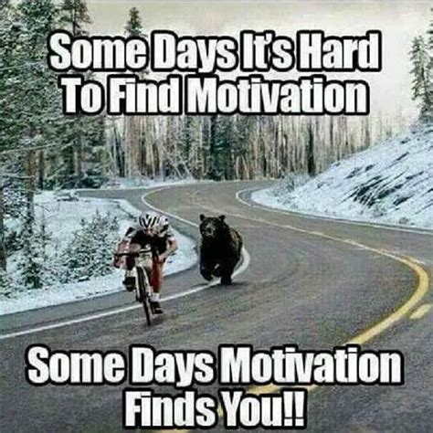 Encouraging Meme - somedays motivation finds you pictures photos and images
