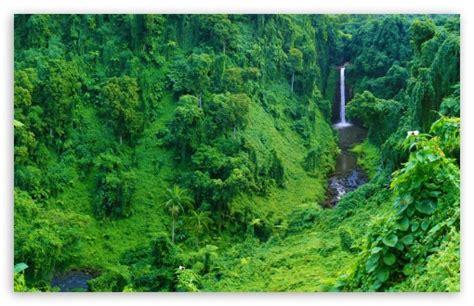 jungle waterfall  hd desktop wallpaper  dual