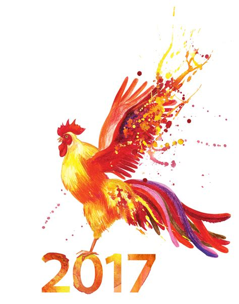 chinese new year the year of the fire rooster rodd
