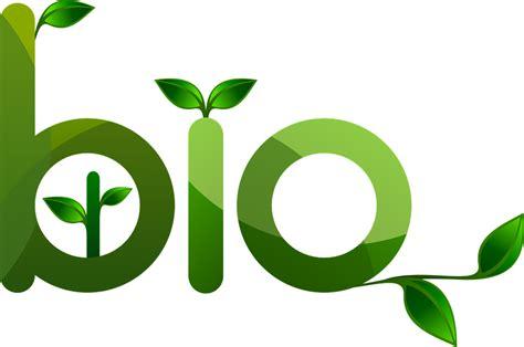 logo designer biography image logo bio