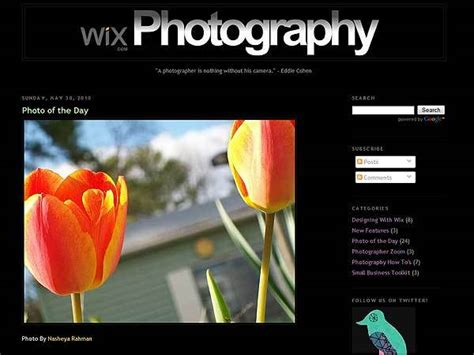 Wix Photography Templates website builder wix creates photography for users to