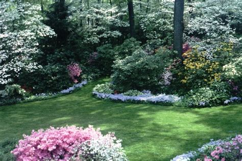 small backyard landscaping ideas for privacy backyard privacy landscaping ideas erikhansen info