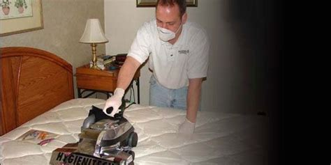Upholstery Cleaner For Mattress by Hygienitech Mattress Upholstery Cleaning Sanitizing