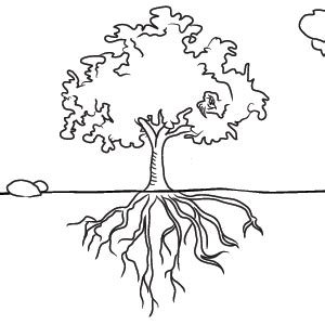 coloring page of tree with roots drawn roots tree sketch pencil and in color drawn roots