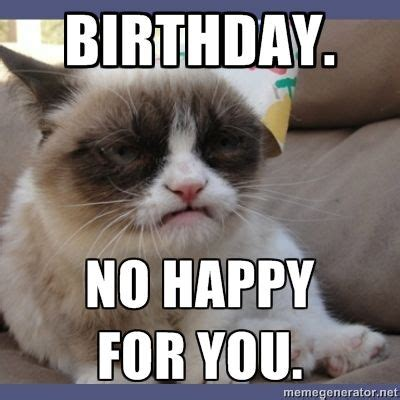 Grumpy Cat Meme Creator - 25 best ideas about grumpy cat birthday on pinterest