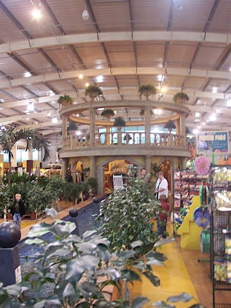 shop trentham gardens 302 best images about trentham garden on
