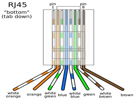 cat5 b wiring wiring diagram with description