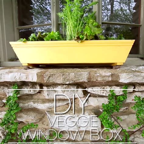 A Window Box Planter by How To Build A Window Box Planter Garden