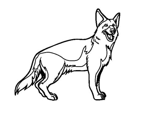 coloring pages of german shepherd german shepherd coloring page coloringcrew