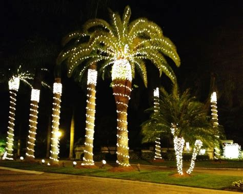 houses with christmas tree lites in palm springs in florida planting our pennies