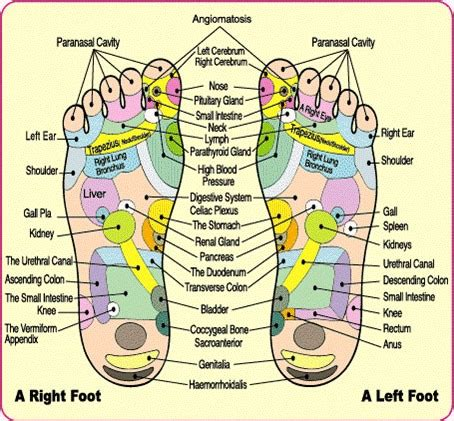 Does Foot Detox Bath Really Work by Do Detox Foot Pads Work How And Why Purify Your