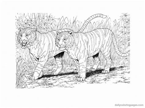 realistic dog coloring pages bestofcoloring com