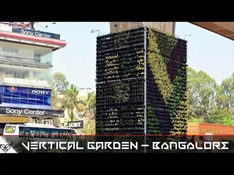 vertical garden bangalore metro pillars to beat