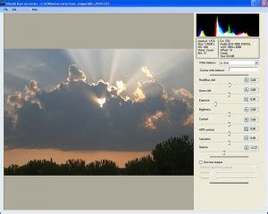 raw format to jpg converter convert raw files from dslr cameras to jpeg compatible