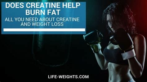 creatine and weight loss 274 best weight loss diet plans images on