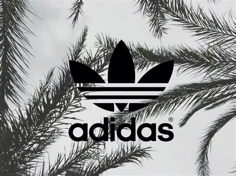 adidas portrait wallpaper i love adidas so much aiii by whi