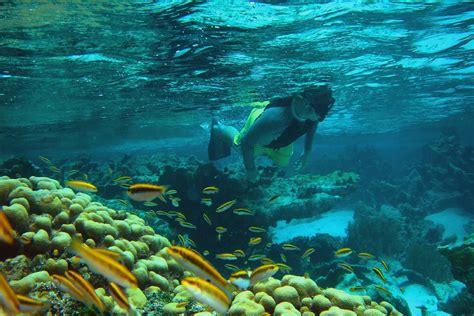 cool runnings catamaran barbados facebook barbados tours caribbean island adventures island routes
