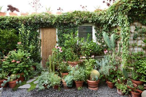 The Planthunter ? Plant / Life: A Tiny Brunswick Garden