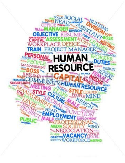 25 best ideas about human resources on