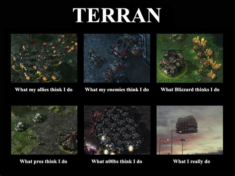 Starcraft 2 Meme - image 263443 what people think i do what i really