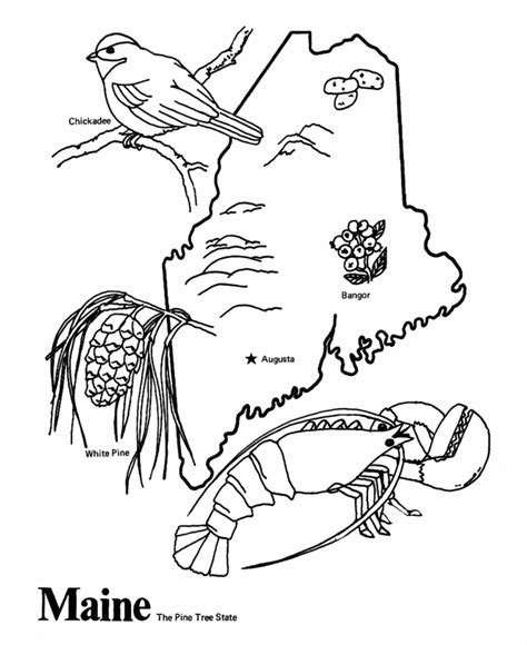 state symbols coloring pages coloring home