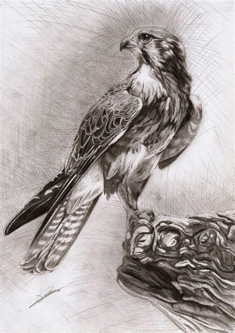 mantide religiosa porta fortuna falcon by ambr0 on deviantart