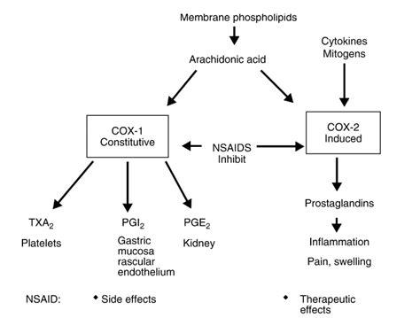 mekanisme kerja induktor dan kapasitor mekanisme aksi cara kerja natrium diklofenak natrium diclofenac sodium diclofenac sodium